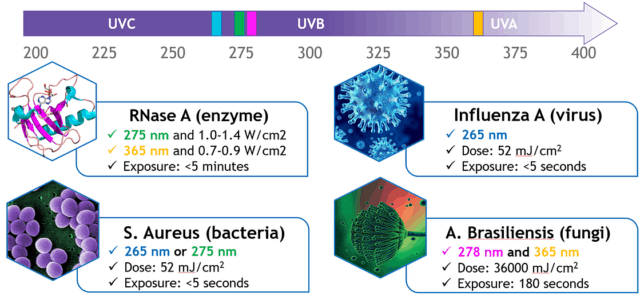 Wavelengths for Disinfection
